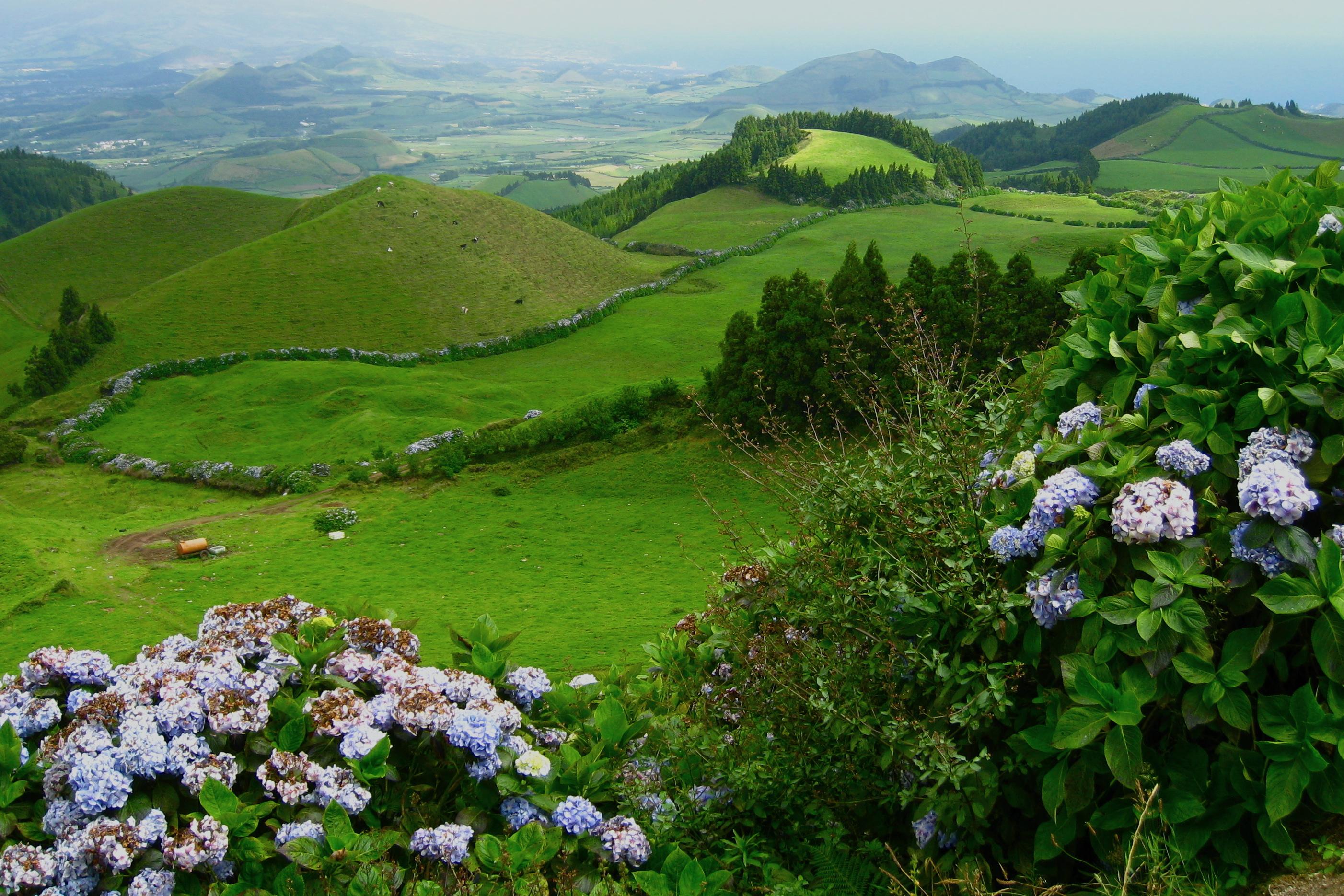 Snapshot: São Miguel Island, Azores, Portugal